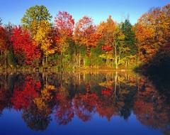 AutumnTreesNlake-L2
