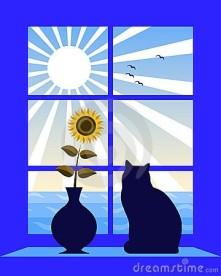 sea-sun-outside-window-15244348