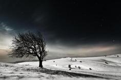 dark-snowy-night