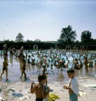 lions-park-pool